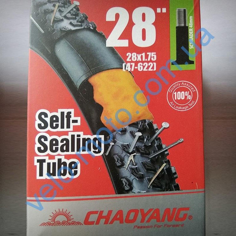 Велокамера 29″ Chao Yang Self sealing АНТИПРОКОЛ ГЕЛЬ США